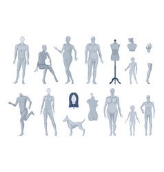 window and tailor mannequins icons collection vector image
