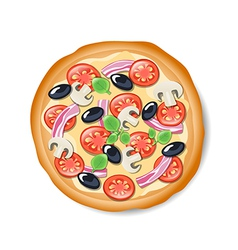 Isolated tasty italian pizza vector