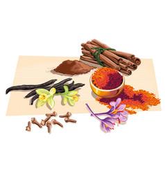 Cloves vanilla saffron and a few pieces of vector