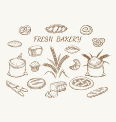 fresh bakery elements sketch vector image vector image
