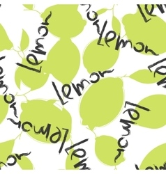 Green lime and lemon fruits on white background vector image