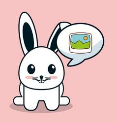 kawaii bunny bubble speech image vector image