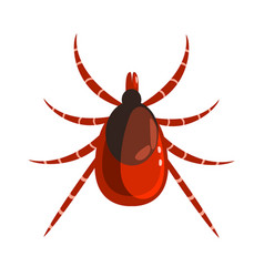 mite or tick dangerous parasite colorful cartoon vector image