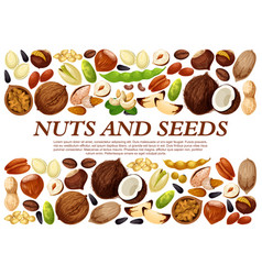 poster of nuts and fruit seeds vector image vector image