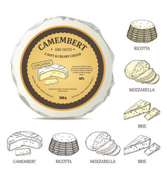 Round cheese mockup with camembert label vector