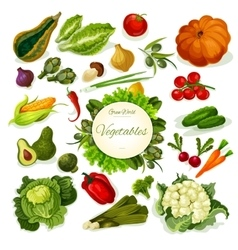 Vegetables vegan food poster vector