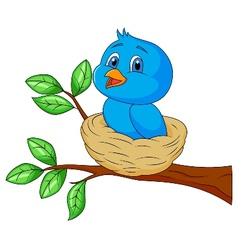 Blue bird cartoon in the nest vector