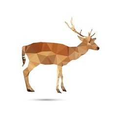 Deer abstract vector image