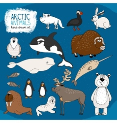 Set of hand-drawn arctic animals vector
