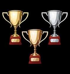 sports cups vector image