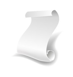 Blank white paper sheet roll or manuscript curved vector