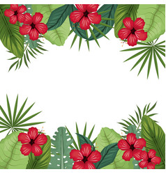Card hibiscus with palm leaves border vector