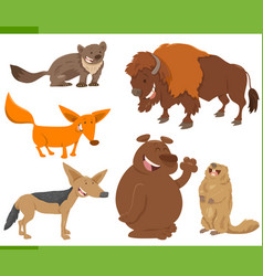 Cute wild animal characters set vector