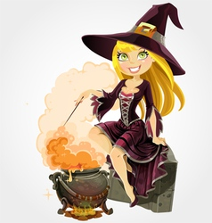 Witch and boiler of potion vector