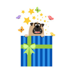 dog in present box greeting card vector image