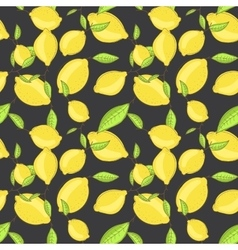 Green lemon fruits with leaf on branch dark black vector