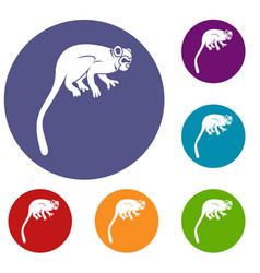 Marmoset monkey icons set vector