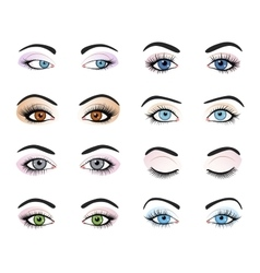 Set of female eyes and brows image vector image