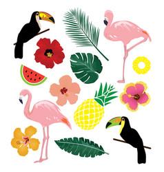 Tropical elements vector