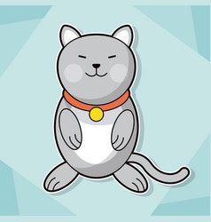 Cute kitten collar feline pet image vector