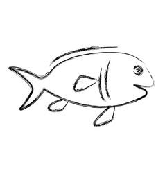 fish seafood symbol vector image
