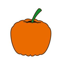 ripe pumpkin harvest vegetable food garden vector image vector image