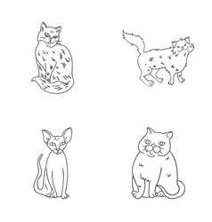Sphinx nibelungnorwegian forest cat and other vector