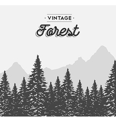 Vintage forest text label on winter tree landscape vector