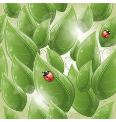 leaves design with ladybug vector image vector image