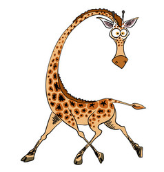 Cartoon image of giraffe vector