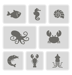 Monochrome icons with sea food and products vector