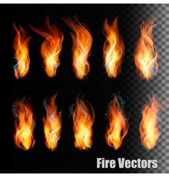 Fire on transparent background vector