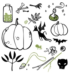 Set of things witches vector