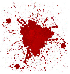 abstract blood splatter isolated vector image
