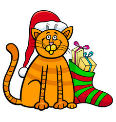cat with gifts on christmas time vector image vector image