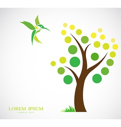 Trees and hummingbirds vector image vector image