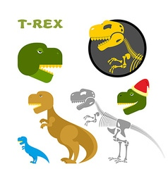 Tyrannosaurus collection of items bones and the vector