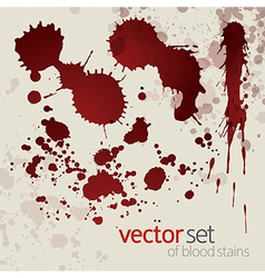 Splattered blood stains set 7 vector image