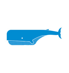 Keith isolated large sea mammal on white vector