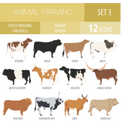 Cattle breeding cow bulls breed icon set flat vector
