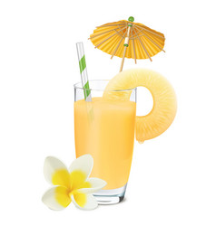 Pineapple juice and fresh pineapple plumeria vector