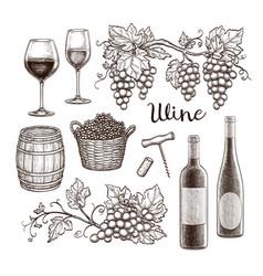 Wine set isolated on white background vector