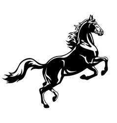 Rearing horse black white vector