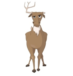 Cartoon character deer vector