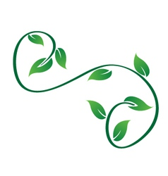 Green swirly leaves logo vector image