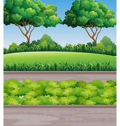 Scene at park with lawn and trees vector