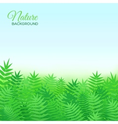 Natural background with grass vector image