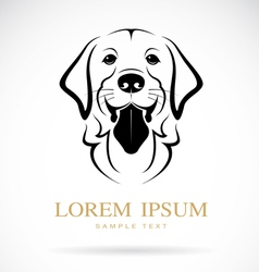 dog golden retriever vector image