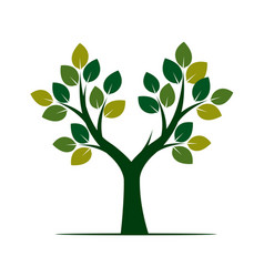Green tree with leafs vector
