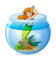 A mermaid inside the bowl vector image